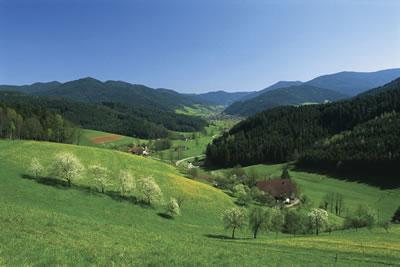Simonswäldertal bei Waldkirch, Foto: STG