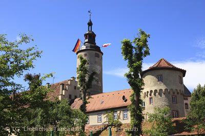 Kurmainzisches Schloss.