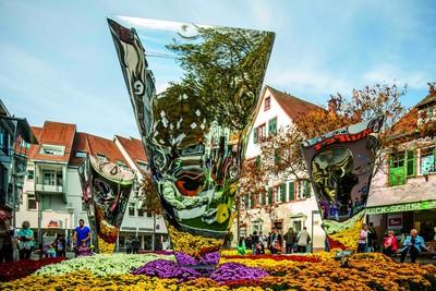 Chrysanthema Lahr, Schlossplatz, Spiegel. Chrysanthema Lahr, Urteilsplatz.