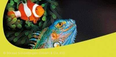 Fisch und Reptil Sindelfingen