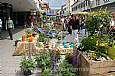Bauernmarkt.
