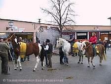 Pferdemarkt im Brauereihof. � Tourist-Information Bad Schussenried