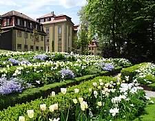 Burg Hornberg am Neckar � G�terverwaltung Burg Hornberg