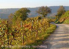 Weinbergidylle bei Sulzfeld
