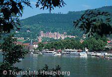 Blick auf Heidelberg.