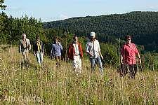 Wo Hänge in steile Felsschluchten übergehen Alb-Guide Wandertour