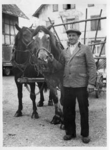 Trippel Theodorf mit Pferden.