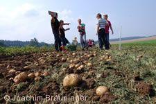 21. Kartoffelfest