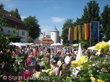 Rosenmarkt Laupheim.