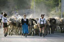 Viehscheid Wertach.