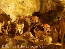 Illumination 'World-of-Lights' in der Bärenhöhle