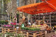 Hamelner Herbstmarkt