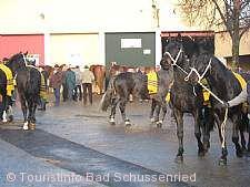 Pferde- und Krämermarkt