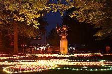 Schlossparkbeleuchtung