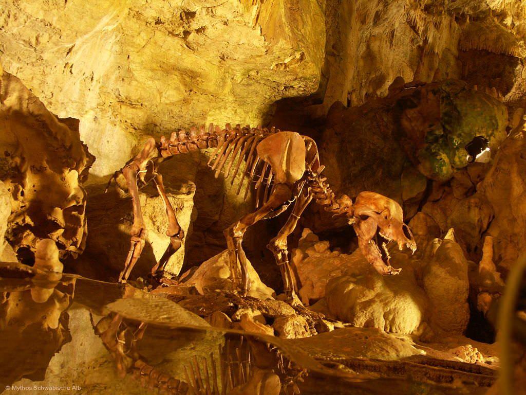Illumination 'World-of-Lights' in der Bärenhöhle